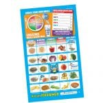 Myplate food bingo nutrition game for children